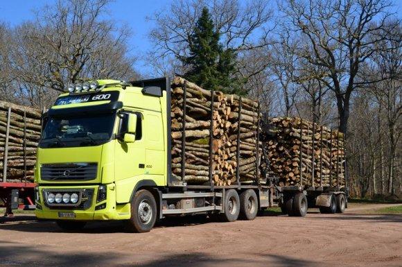 Avantages de la livraison de bois de chauffage Ambert