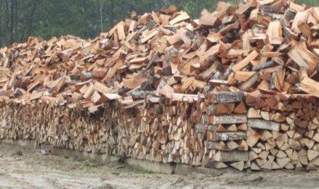 Livraison de bois de chauffage pour particuliers et professionnels à Ambert dans le Puy de Dôme