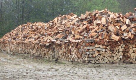 Vente et livraison de bois en bûches Ambert