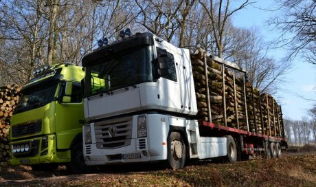 Livraison de bois de chauffage en semi-plateau Ambert
